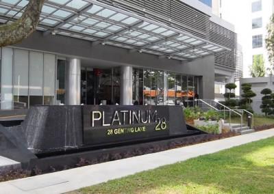 Platinum 28